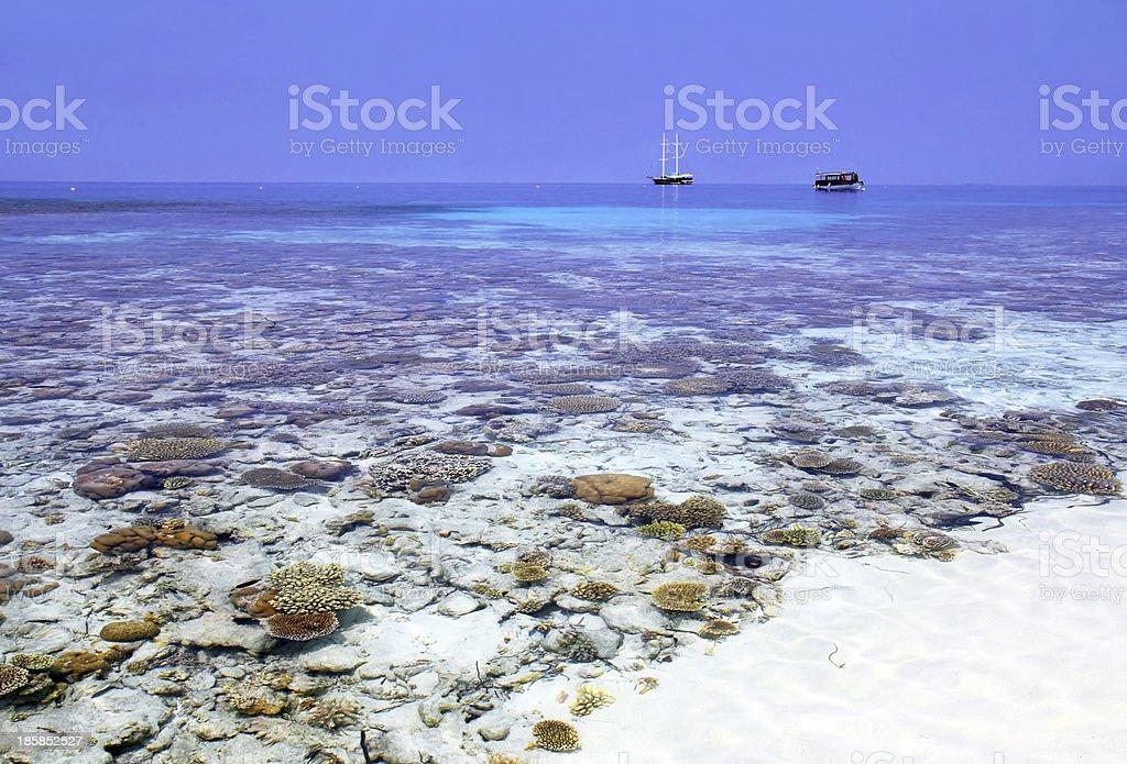 Maldives island stock photo