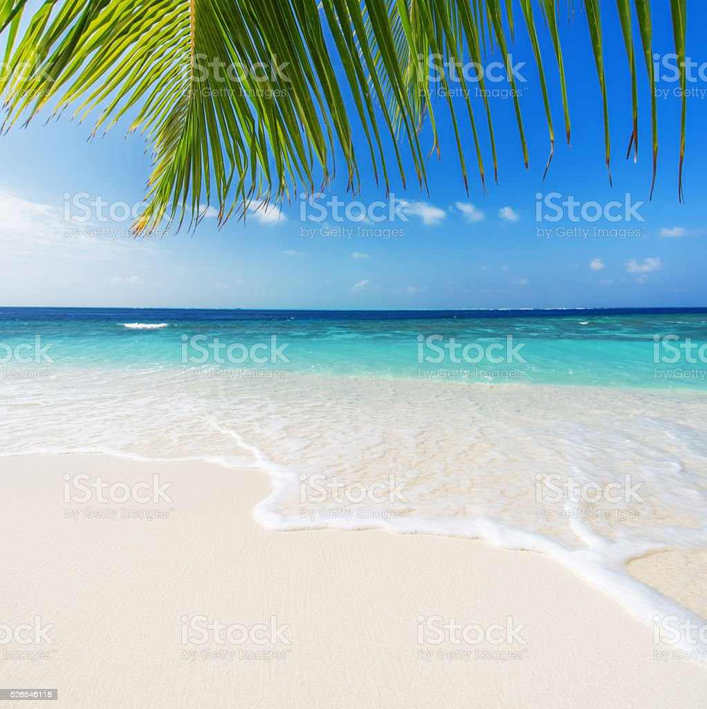Maldives seascape stock photo