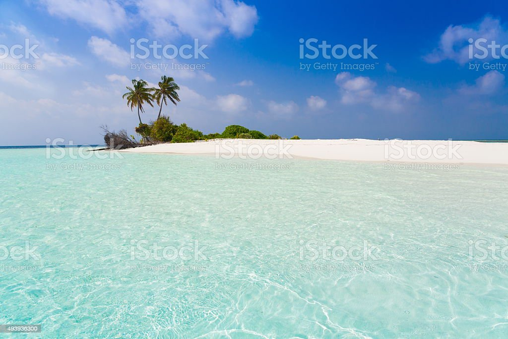 Maldives,  tropical sea background! stock photo