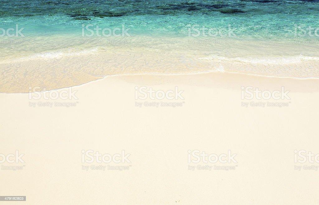 Maldivian coast travel to paradise stock photo