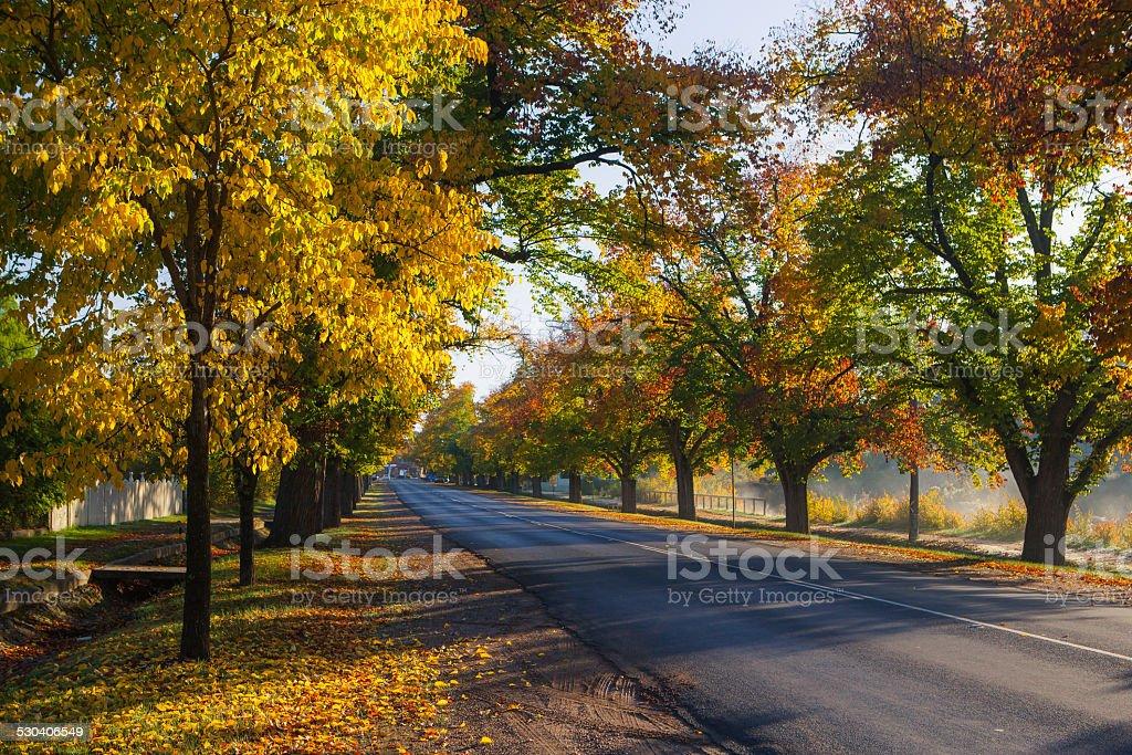 Maldon in Autumn stock photo
