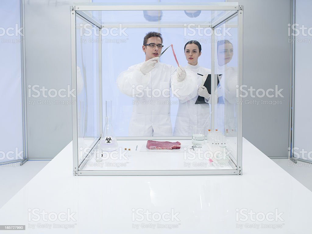 Male and female scientists testing in a lab royalty-free stock photo