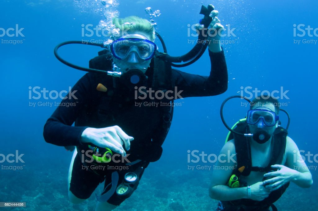Male and Female Scuba Divers, One diver holding LPI hose, one in a wetsuit and one in a bathingsuit in  blue water stock photo