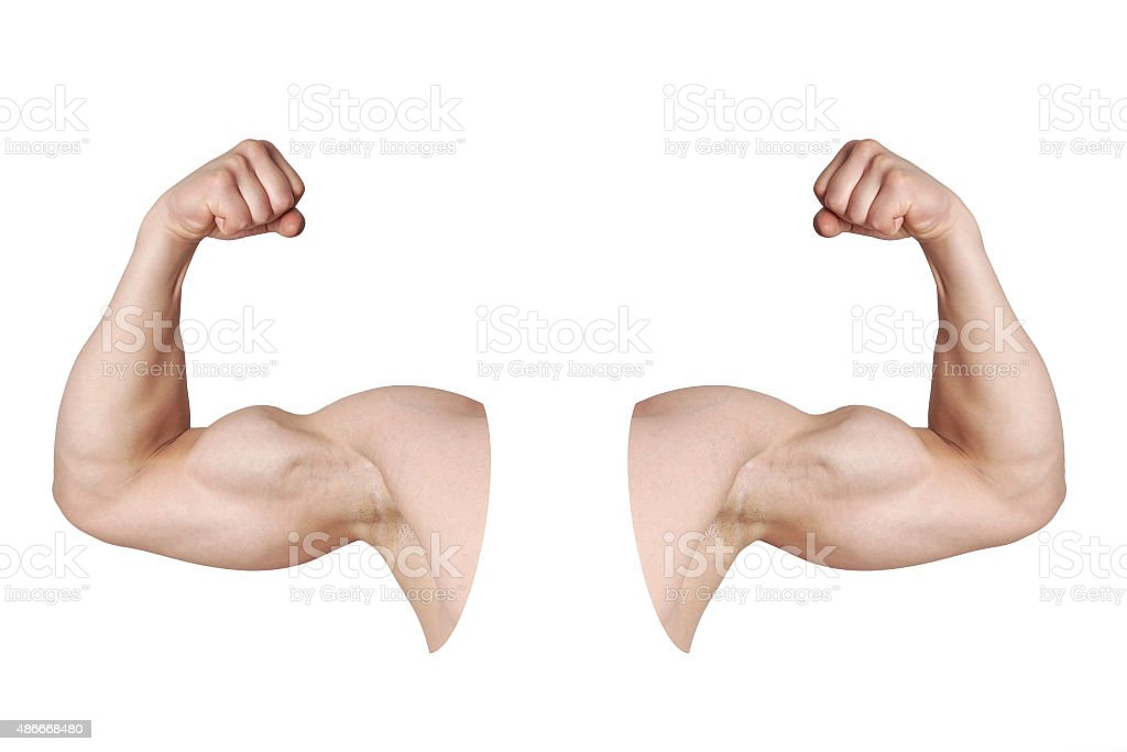 male arms with flexed biceps muscles stock photo