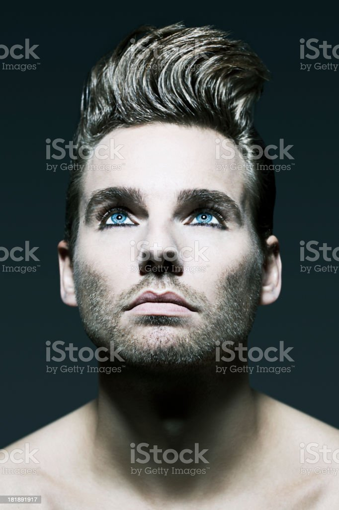 Male Beauty Hairstyle royalty-free stock photo
