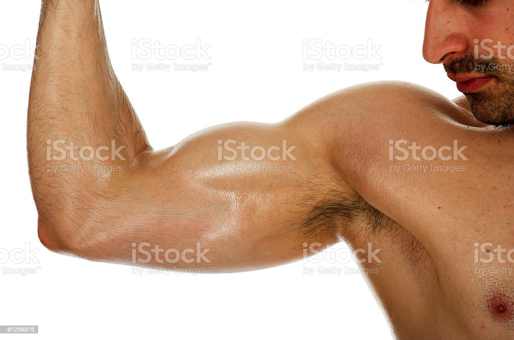 Male biceps stock photo