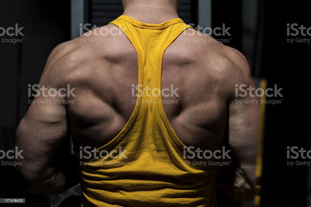male bodybuilder flexing his back royalty-free stock photo