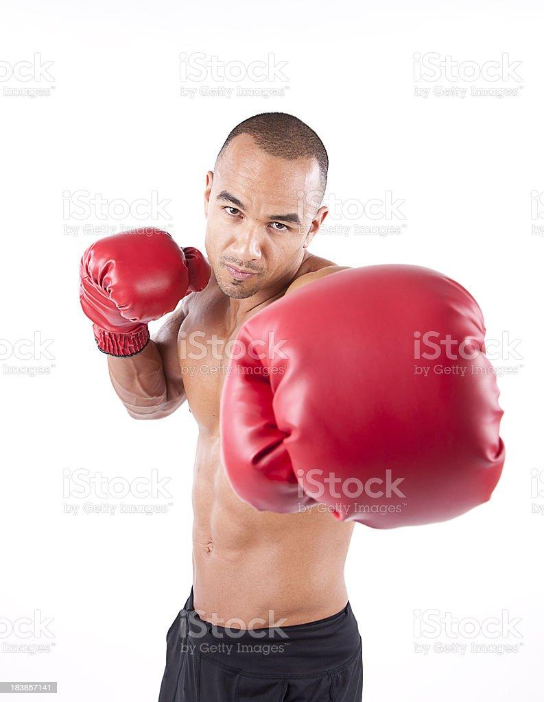 Male Boxer royalty-free stock photo