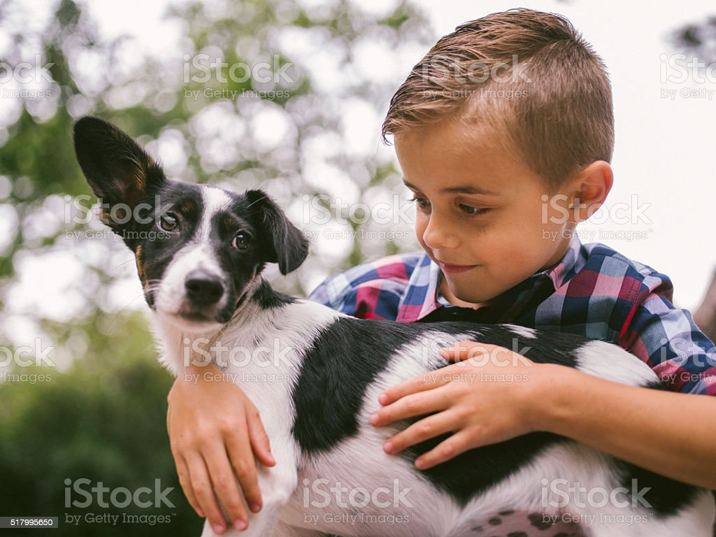 Male Child stroking his pet friend, a crossbreed puppy dog stock photo