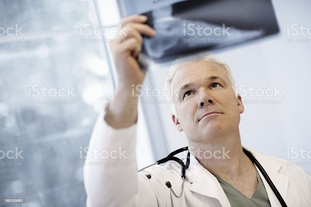 Male Doctor Examining An X-Ray Image stock photo