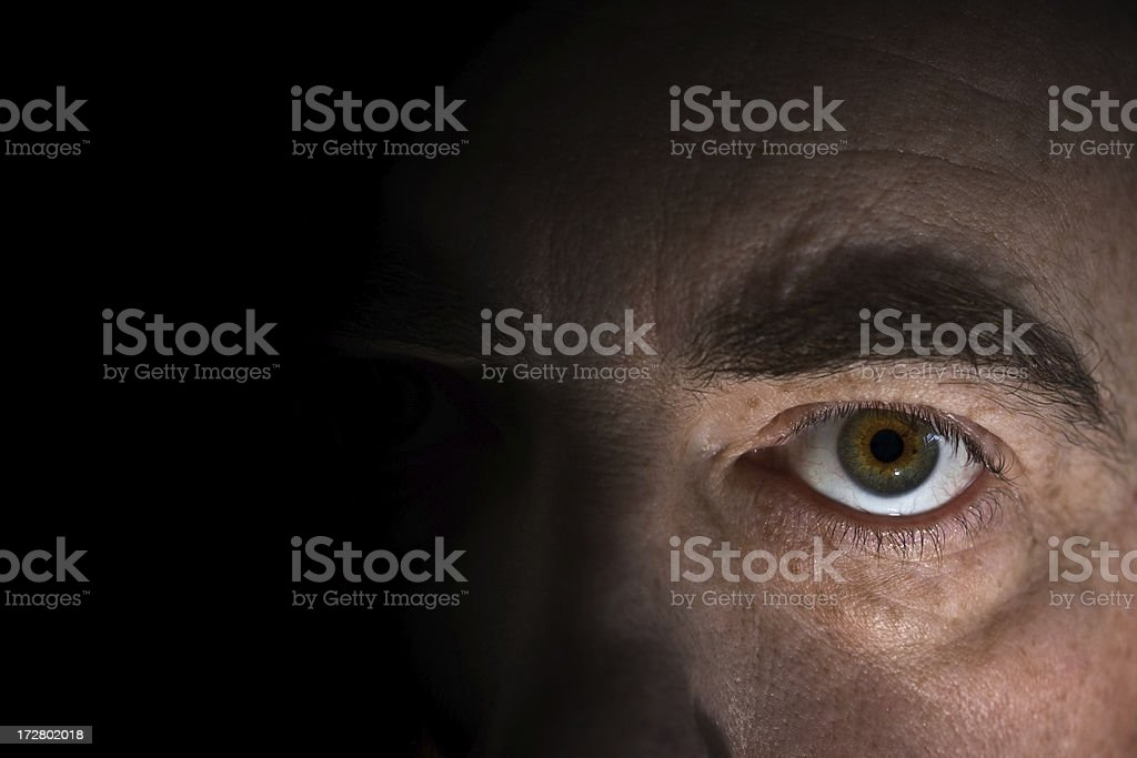 Male Eye royalty-free stock photo
