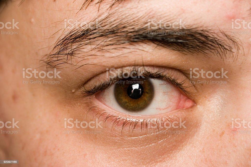 Male Eye royalty-free stock photo
