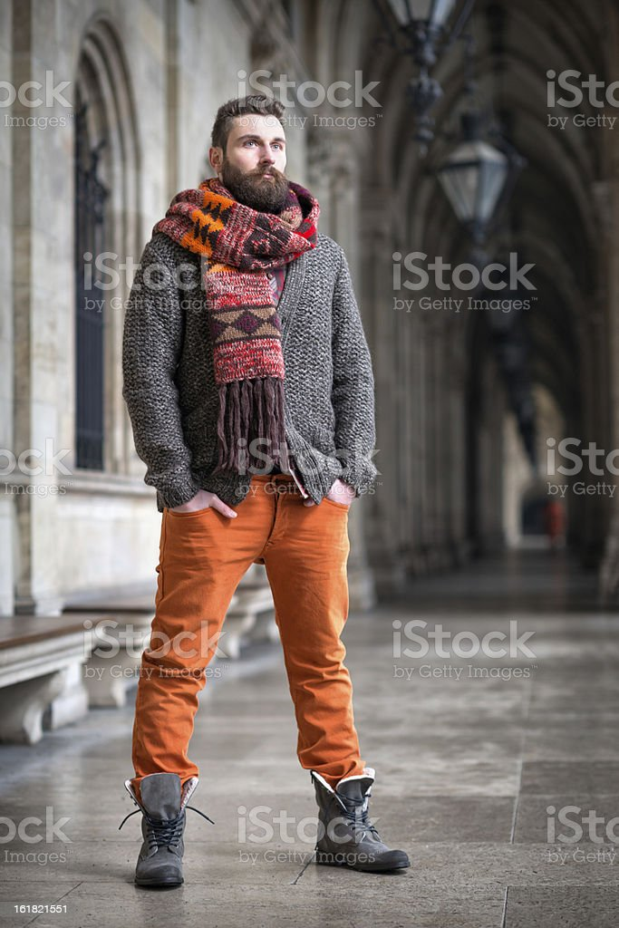 Male Fashion royalty-free stock photo