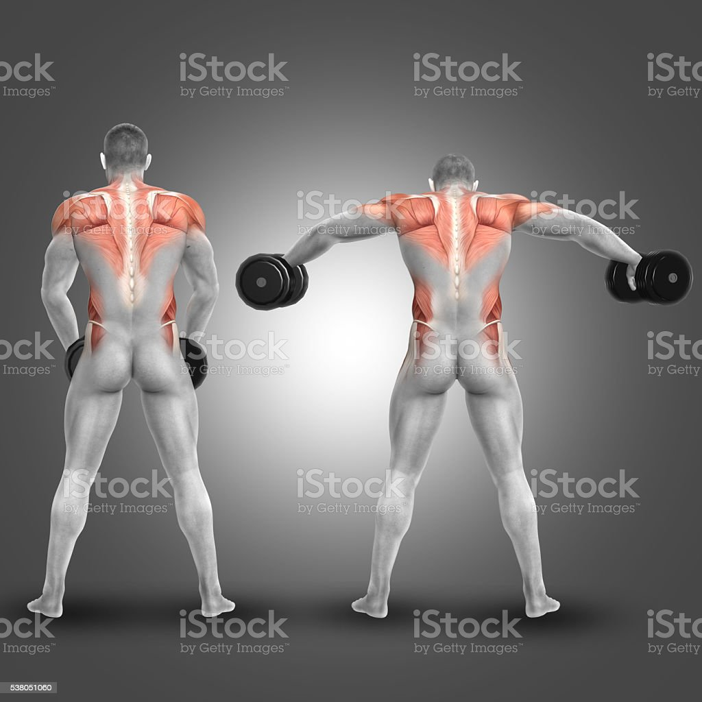 3D male figure doing dumbbell standing lateral raise stock photo