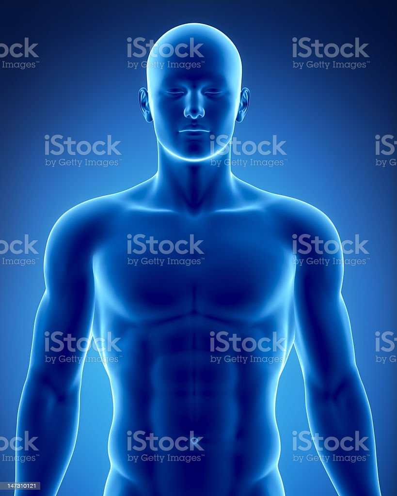 Male figure in anatomical position royalty-free stock photo