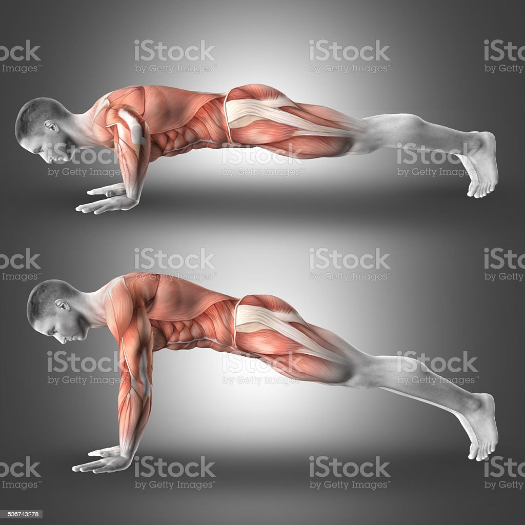 3D Male figure in push up pose stock photo