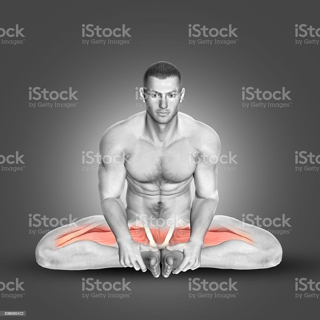 3D male figure in seated abductor stretch stock photo