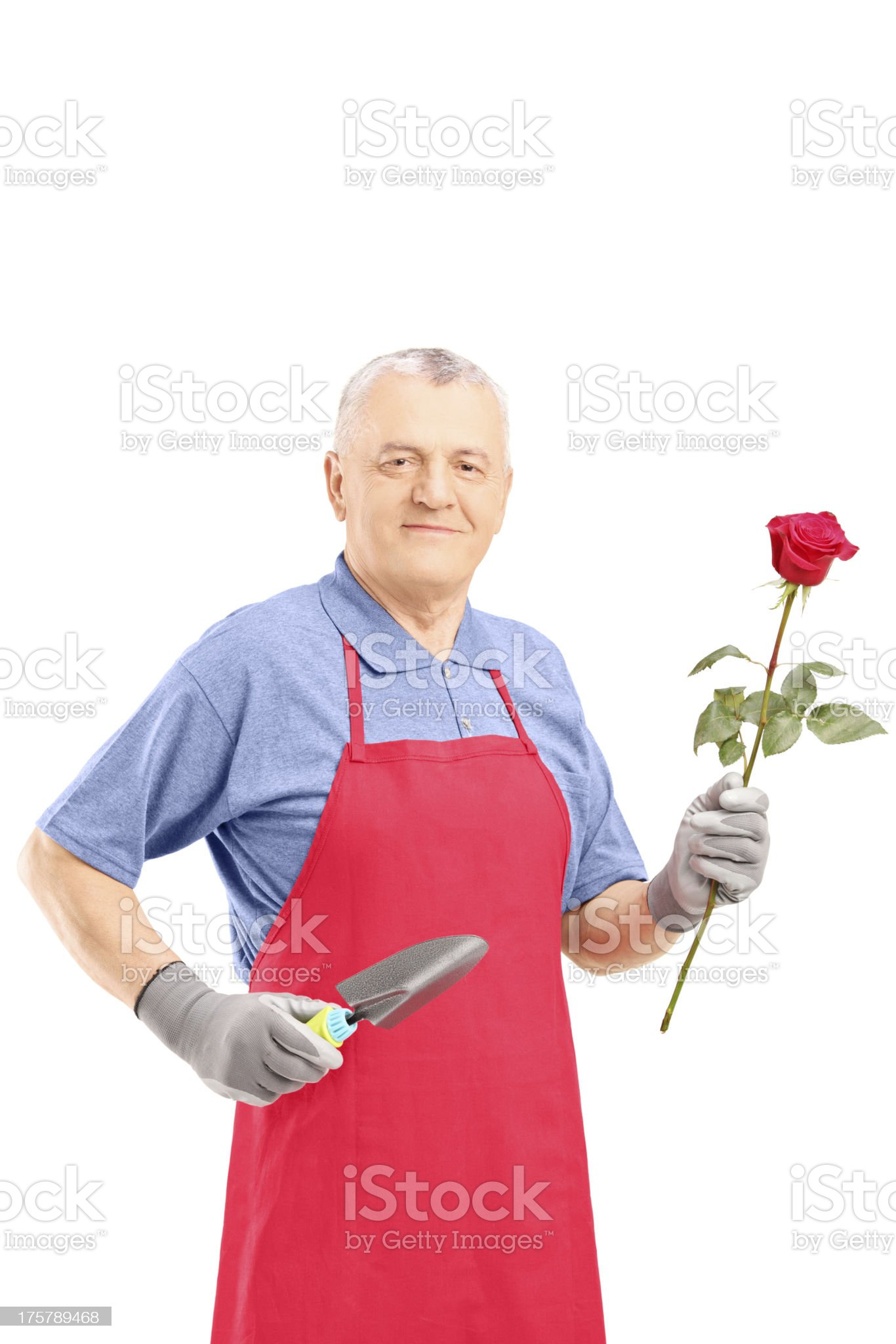 Male gardener holding a flower and gardening equipment royalty-free stock photo