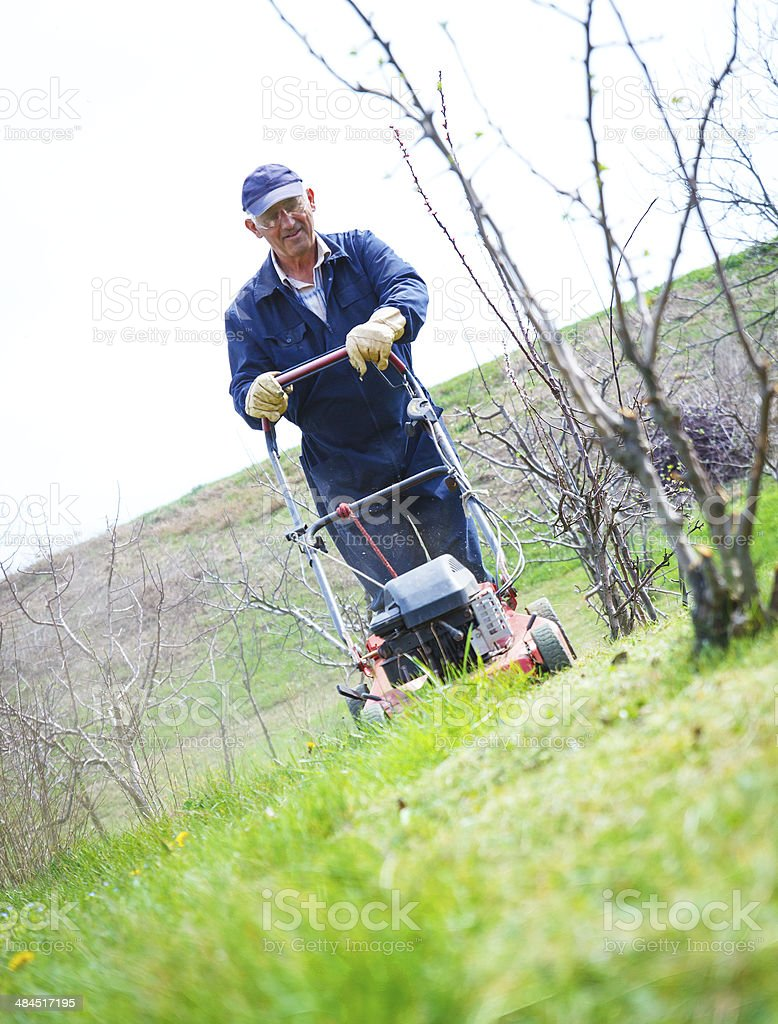 Male gardener  with lawnmower royalty-free stock photo