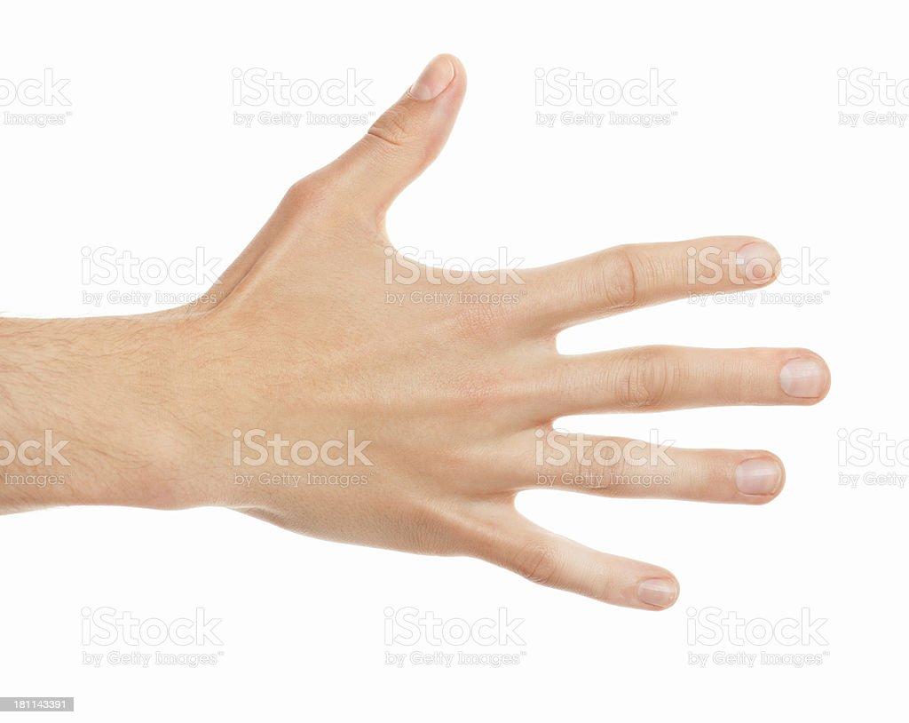 male hand back on white stock photo