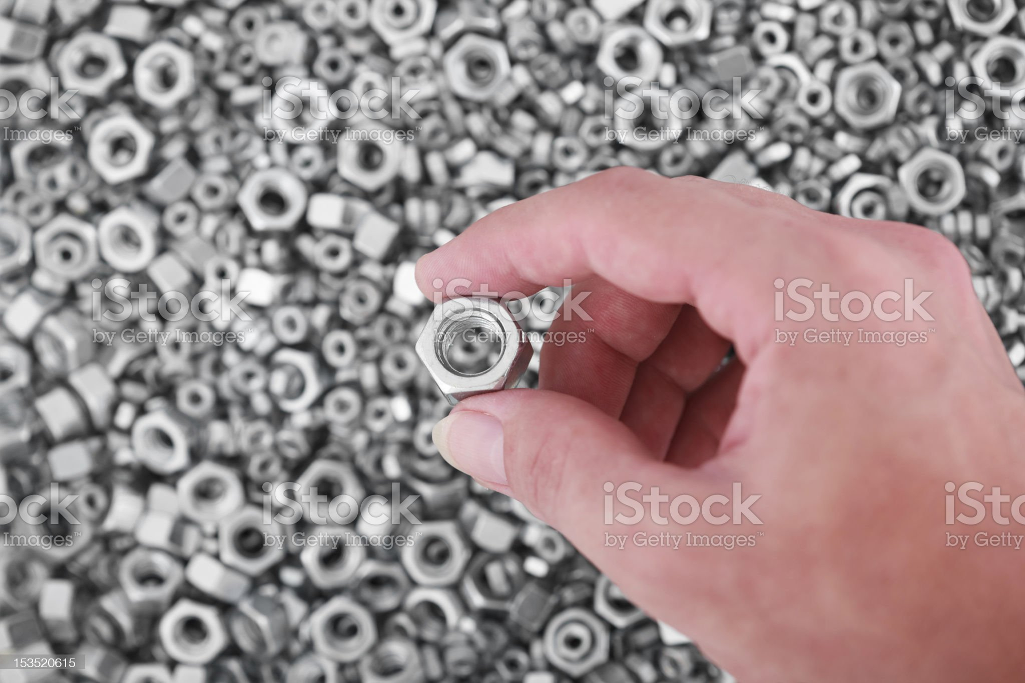 male hand holds nut royalty-free stock photo