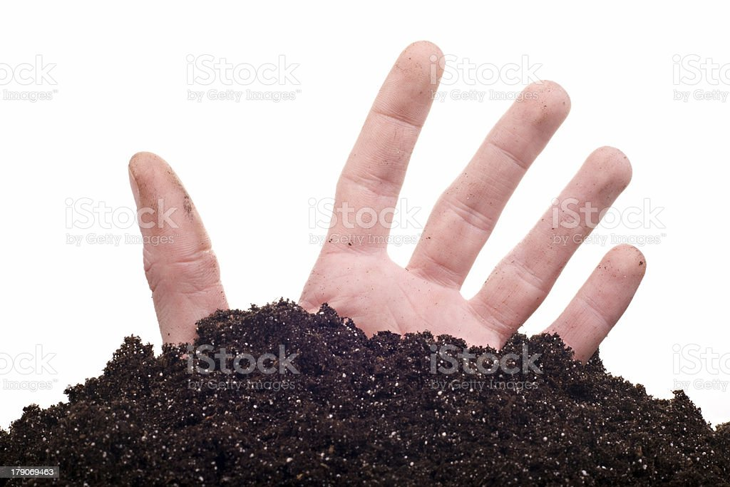 male hand in soil stock photo