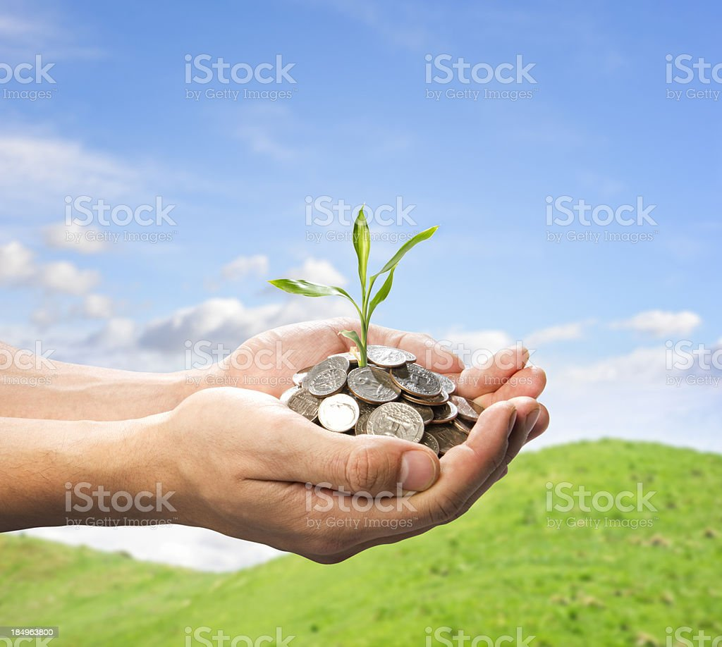 male hands holding coins and small plant stock photo