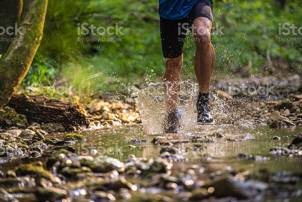Male hiker in forest stock photo
