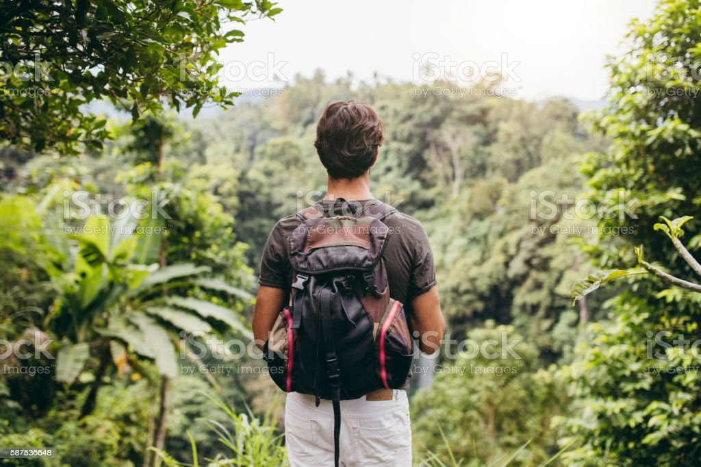 Male hiker looking at waterfall stock photo
