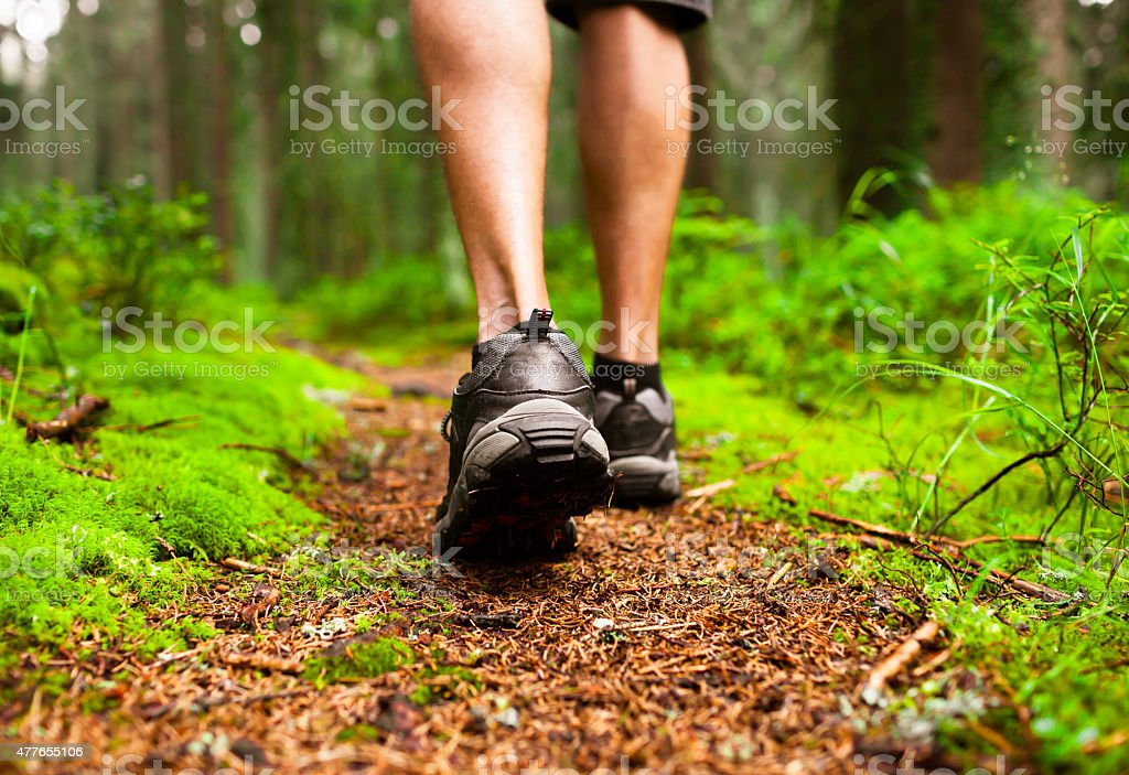 Male hiker stock photo