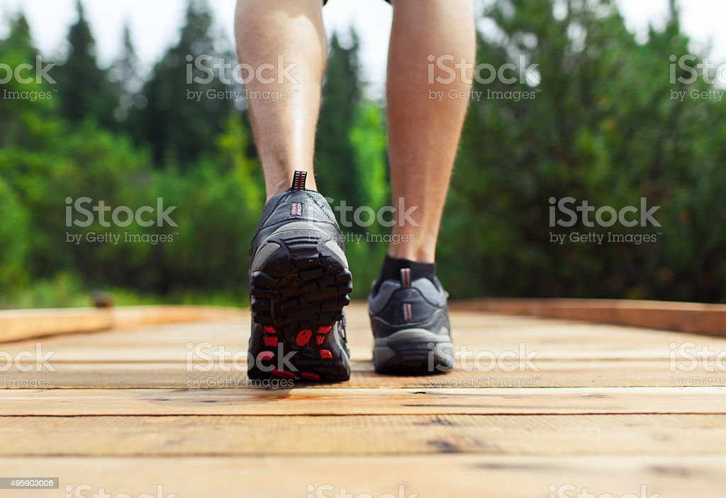 Male hiker walking through the forest stock photo