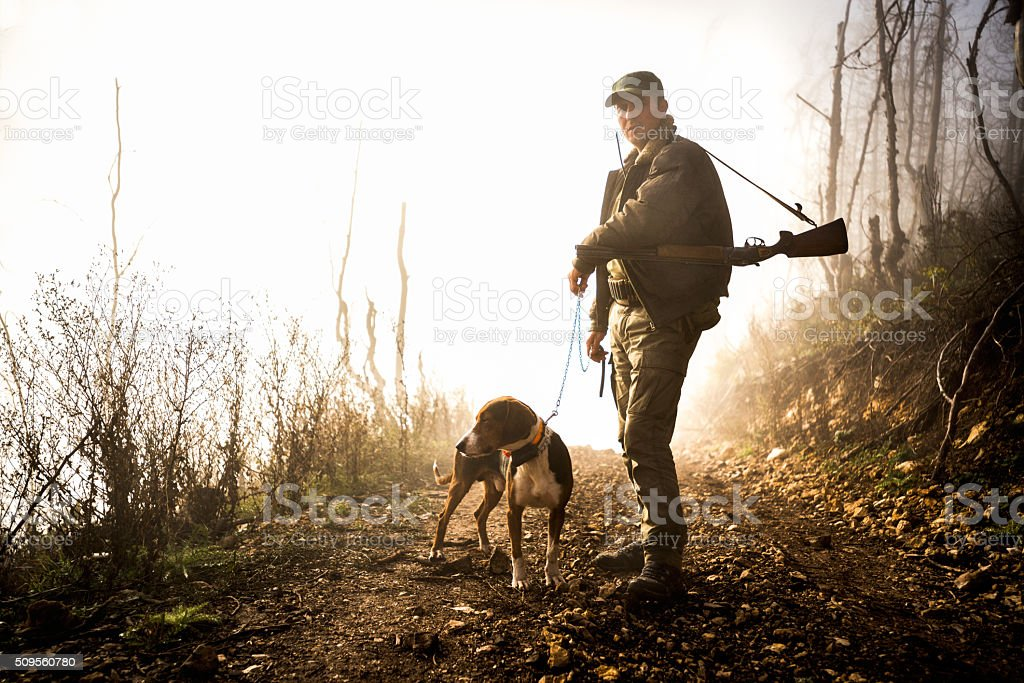 Male hunter with dog in the forest stock photo