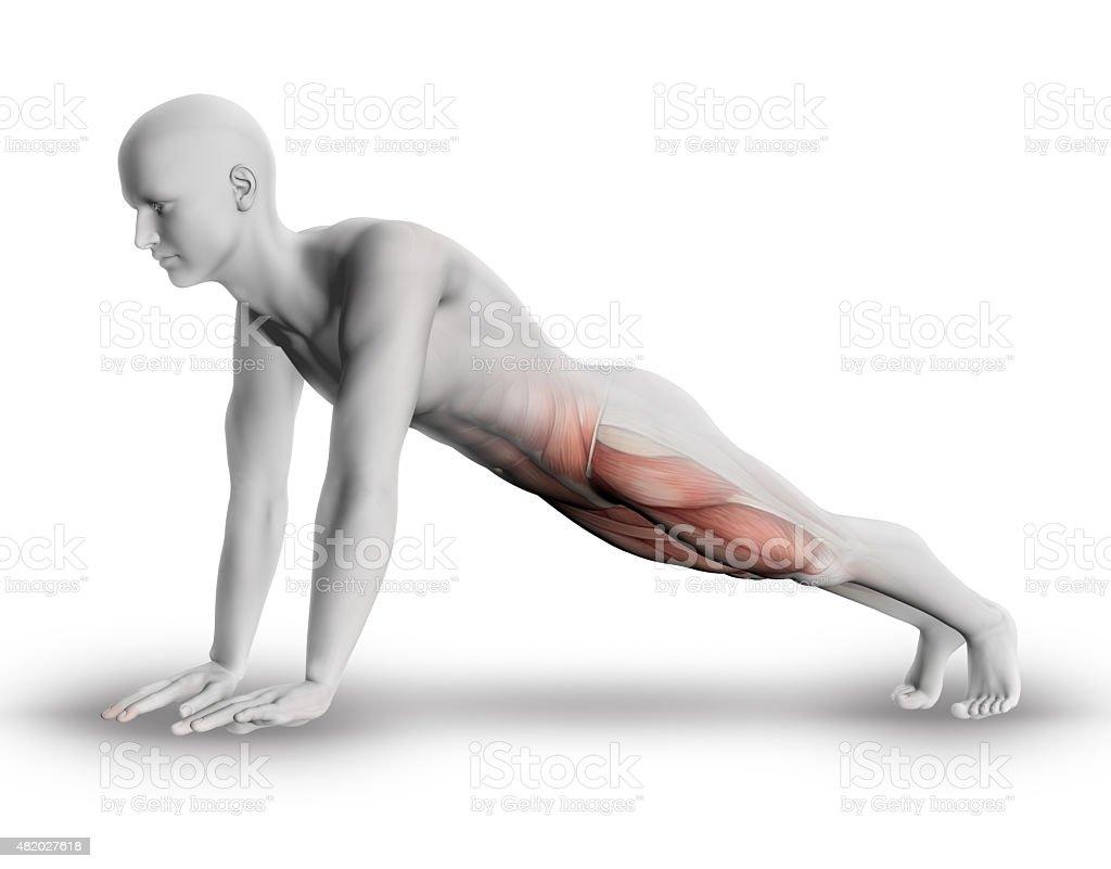 3D male medical figure yoga pose stock photo