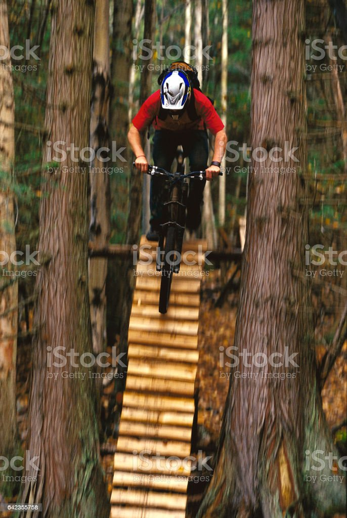 A male mountain bike rider rolls down a steep ladder bridge between two trees on an extreme trail in British Columbia, Canada. stock photo