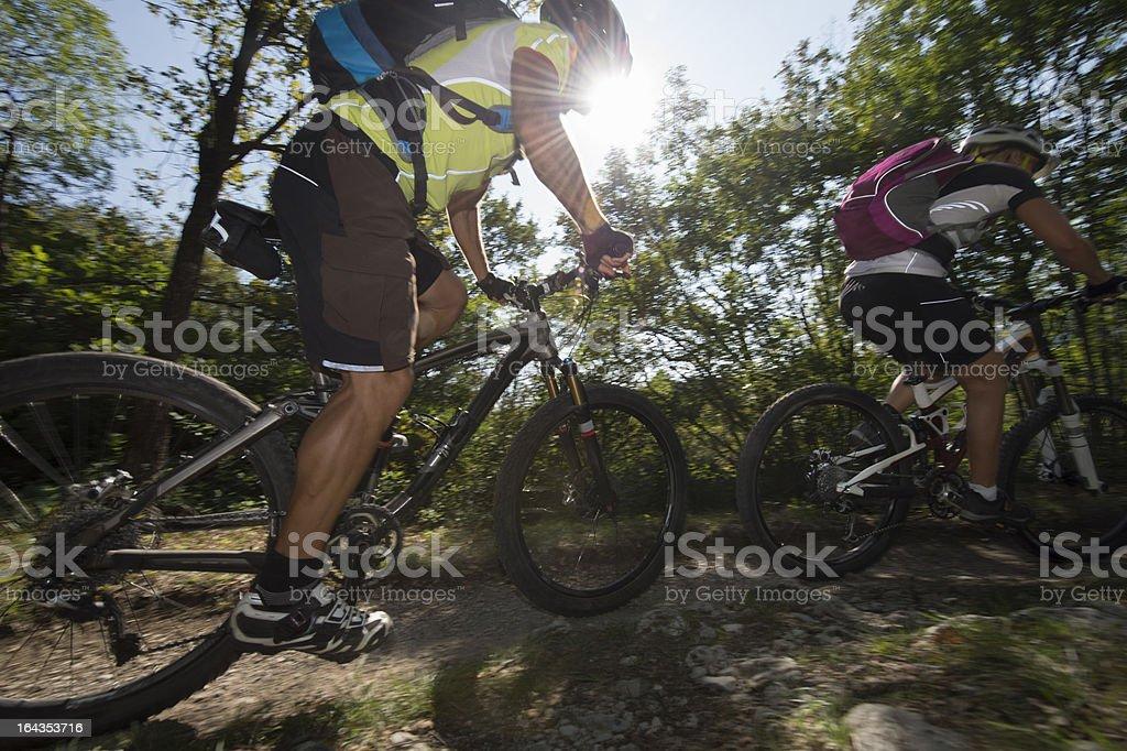 A male mountain biking across a beautiful forest royalty-free stock photo