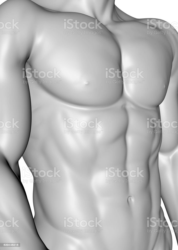 Male Muscle - 3D stock photo