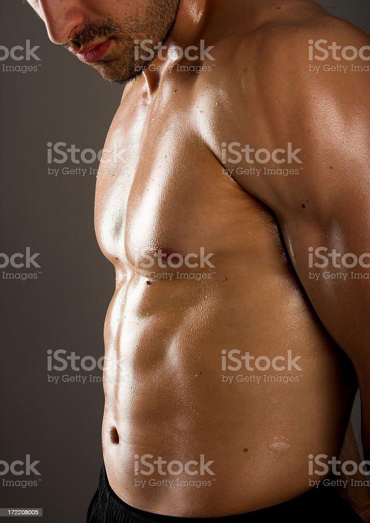 Male muscular body stock photo