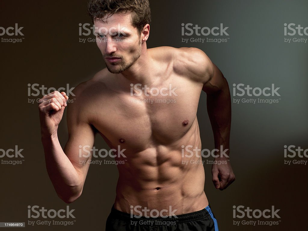 Male Physique royalty-free stock photo