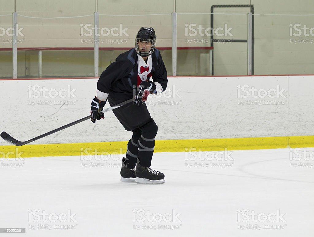 Male playing ice hockey royalty-free stock photo