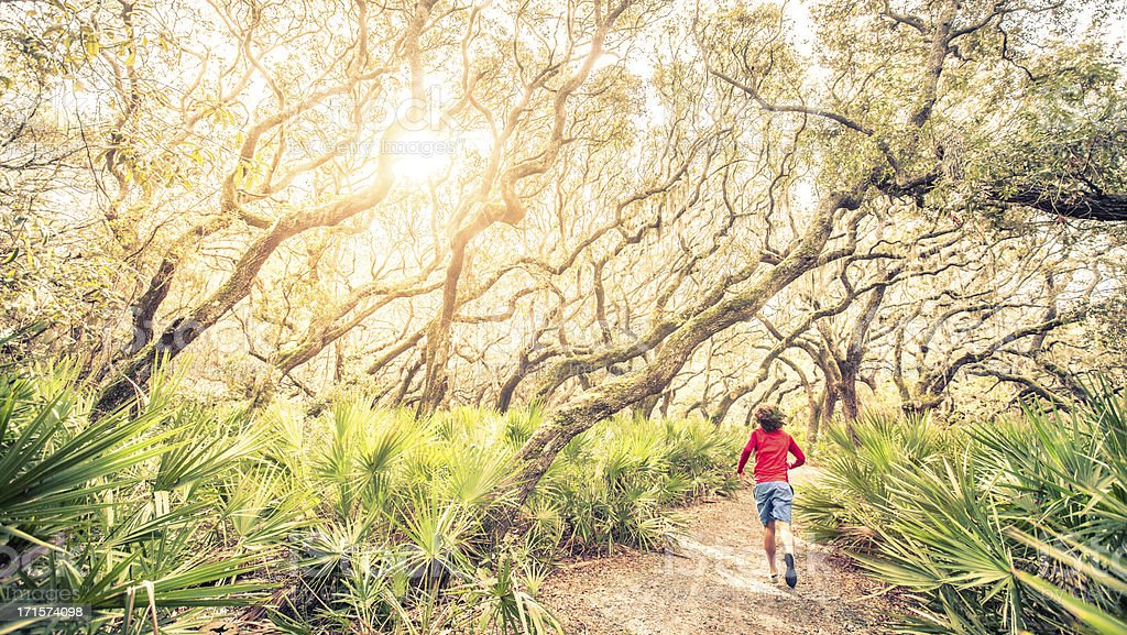Male runner on training run through woods at sunset royalty-free stock photo