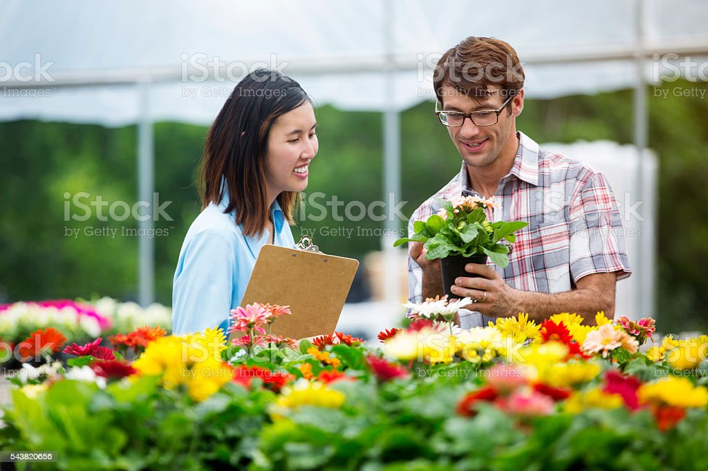 Male shopper looks at flowering plant in nursery stock photo