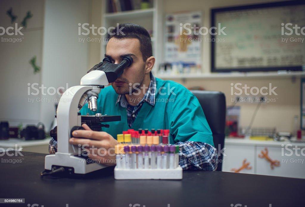 Male vet analyzing something through a microscope. stock photo
