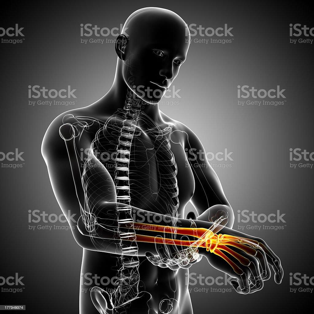 male wrist pain stock photo