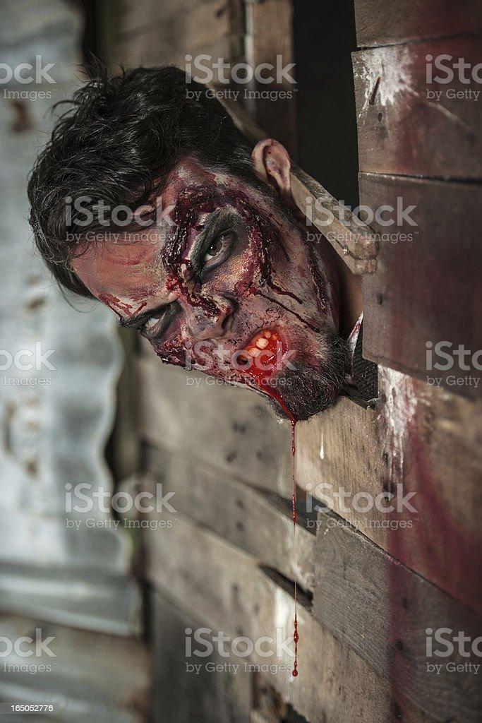 Male Zombie Close-up stock photo