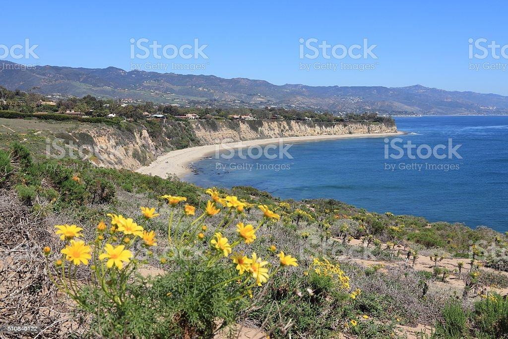 Malibu stock photo