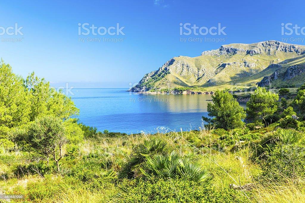 Mallorca stock photo