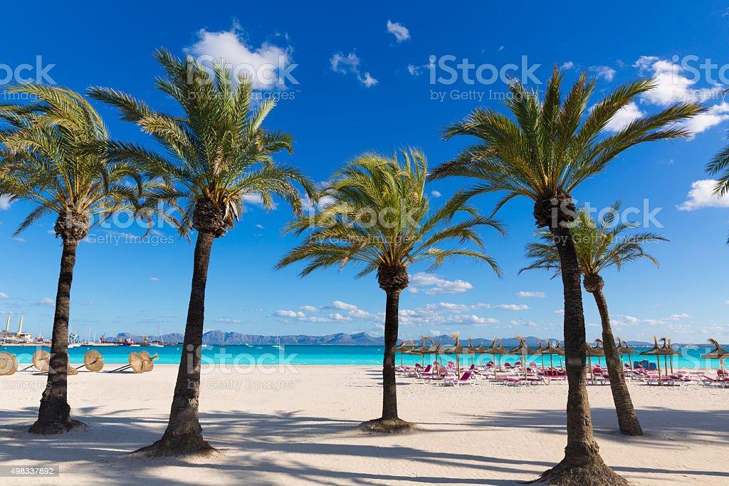 Mallorca Platja de Alcudia beach in Majorca stock photo