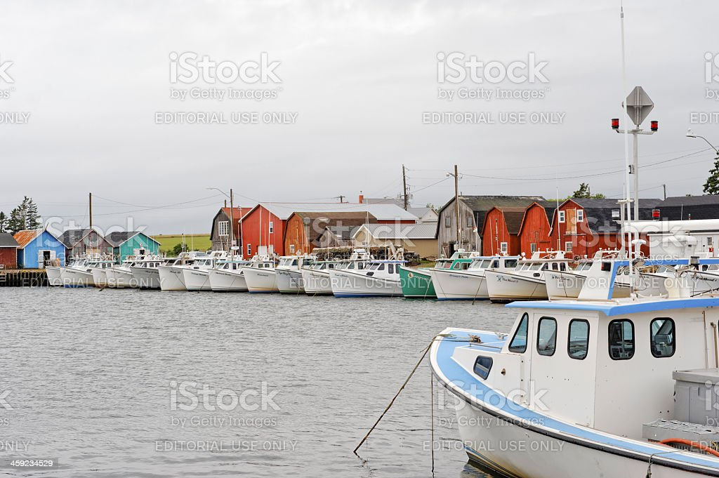 Malpeque Harbour royalty-free stock photo