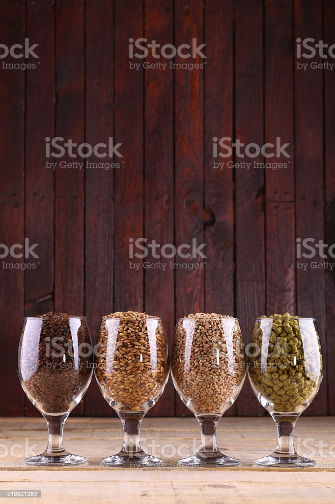 Malt and hops in glasses stock photo