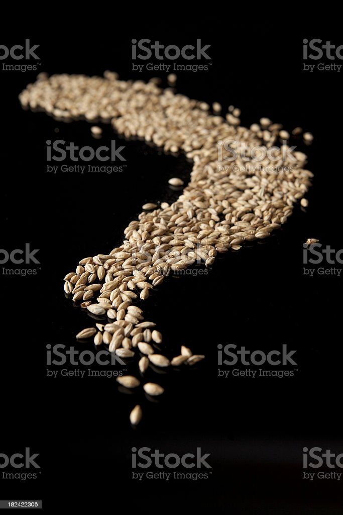 Malted Barley waiting to be made into beer stock photo